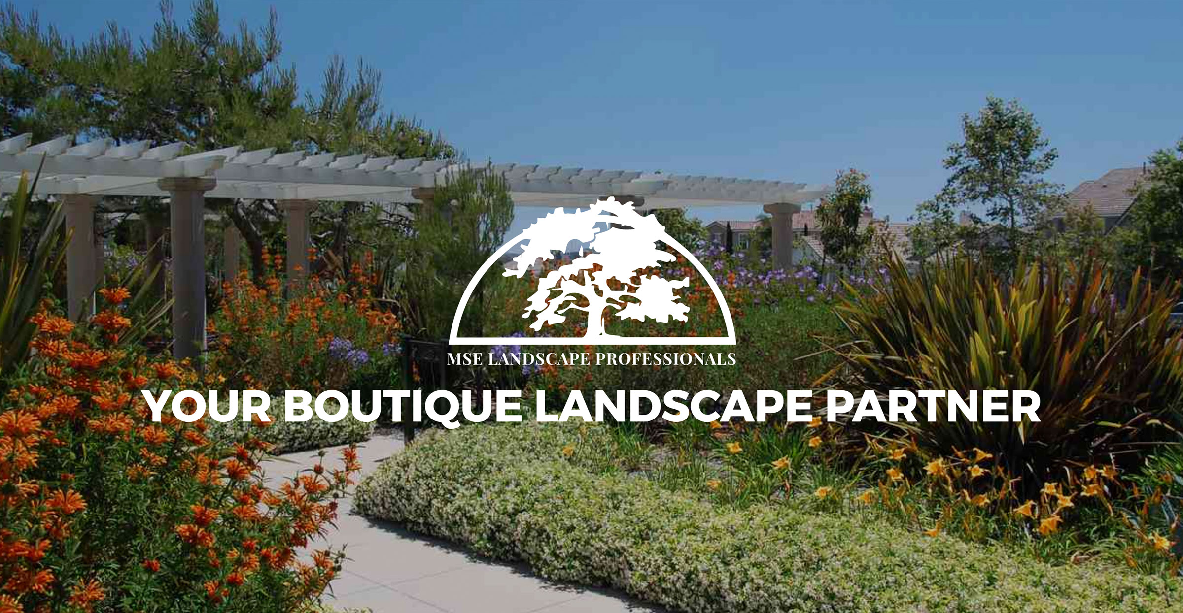 Plant Nurseries - how urban landscaping is born